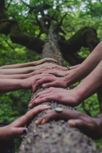 Several hands around a tree